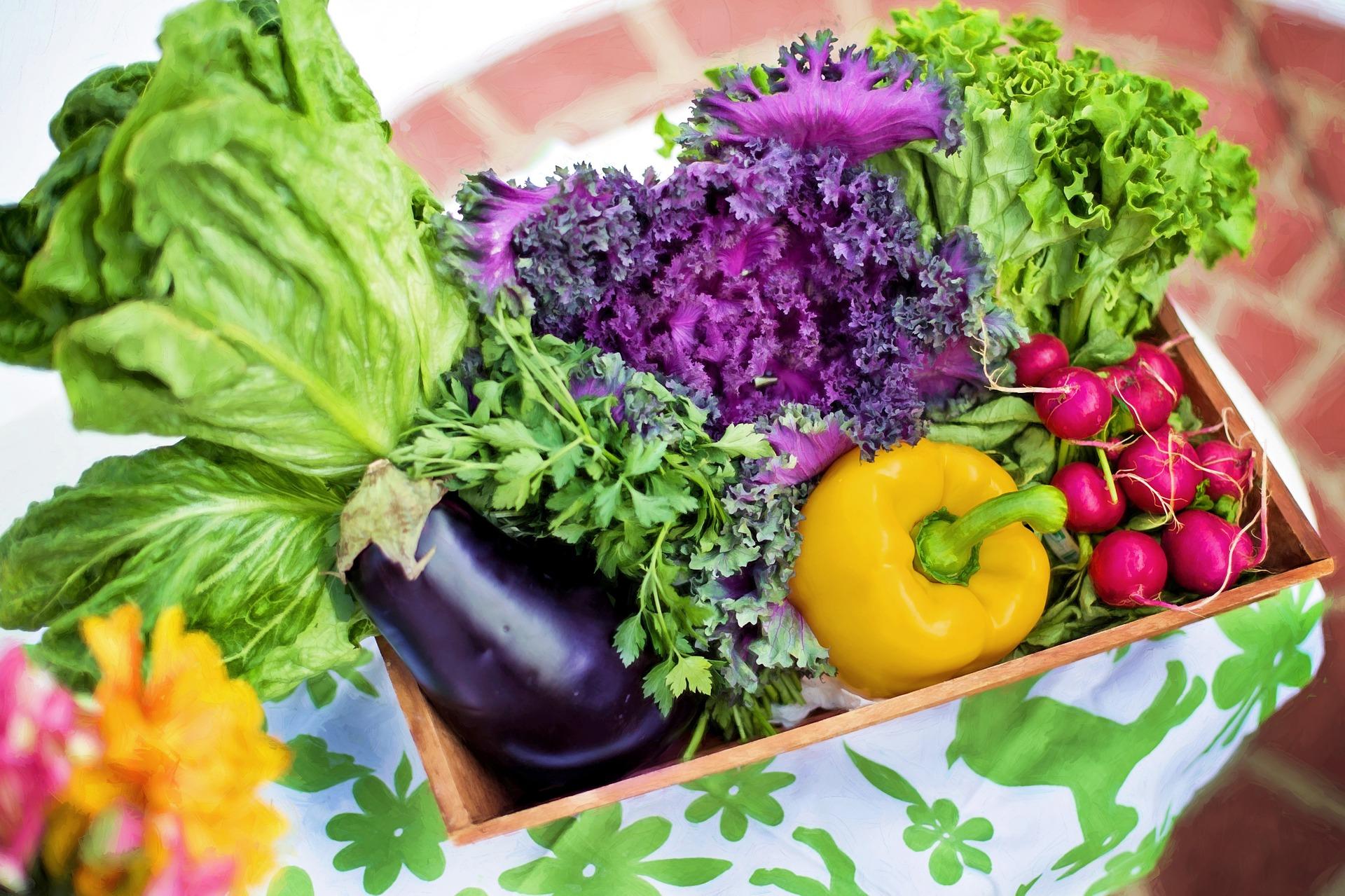 vegetables 790022 1920
